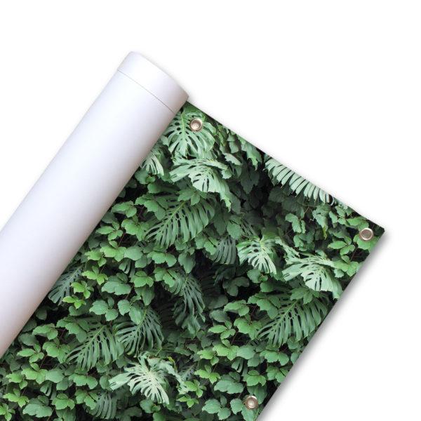 85010-Balkonscherm-Tropische-planten.jpg