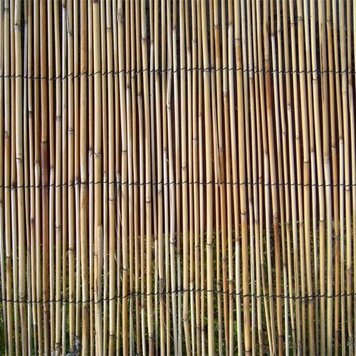 Patroon-riet-500x.jpg