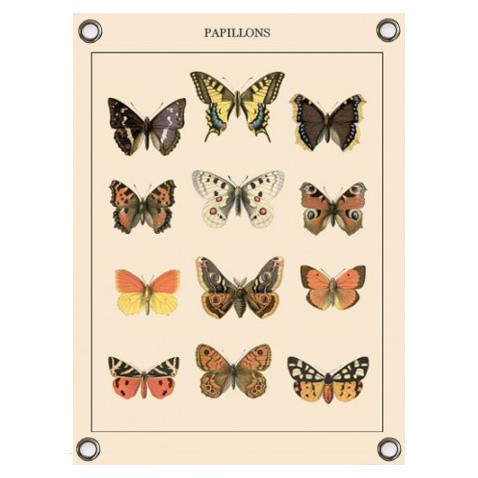 Tuinposter-vlinders-vierkant-600×812-1